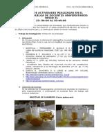 Proy. de Implem. Lab. Org. 2009
