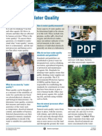 Water Quality Primer