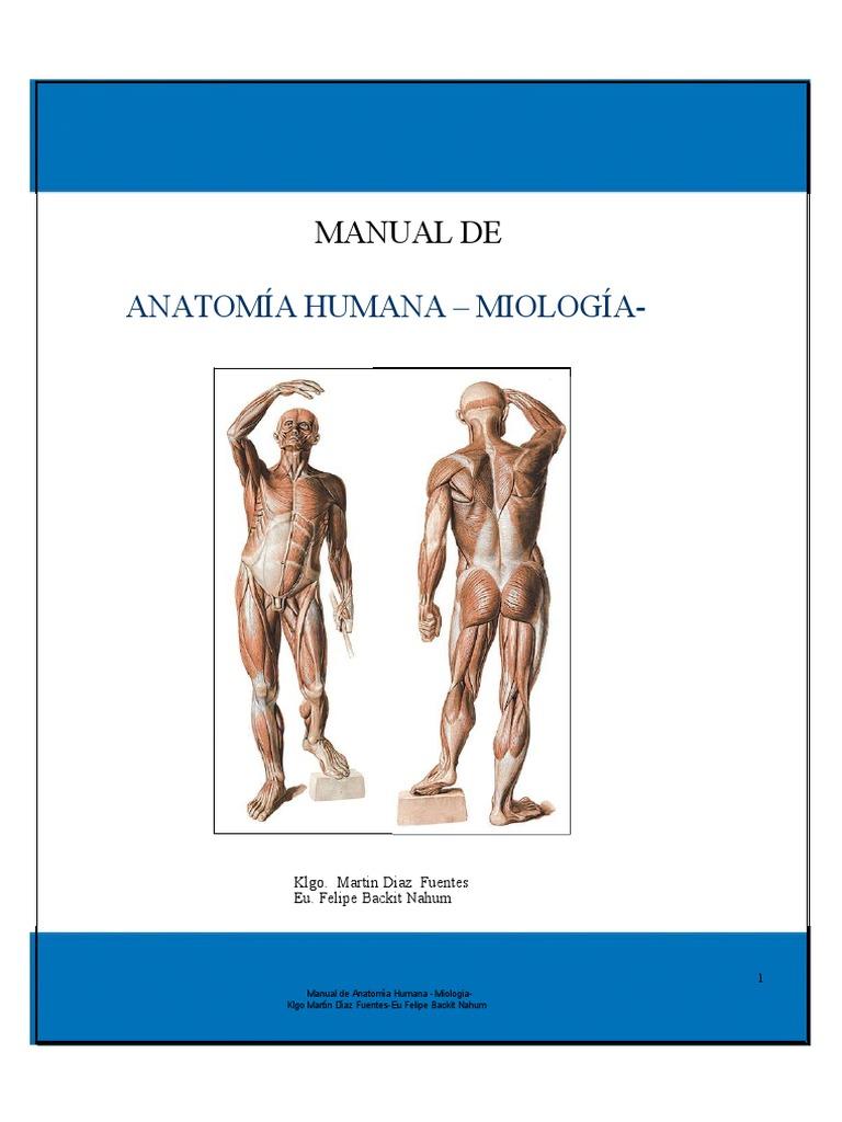 4. Manual Musculos Final(1)