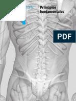 Libro Ortopedia (Ft)