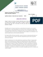 analisis critico.doc