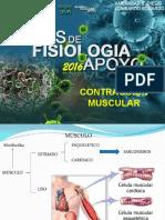contraccionmuscular-2015-diego-chile.ppt