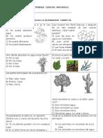 Ficha de Trabajo Ciencias Naturales Las Plantas