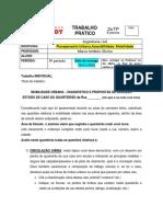 Trabalho Pratico PLANEJAMENTO URBANO para 28 novembro 2016.pdf