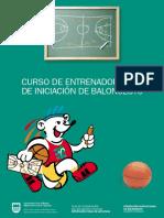 Curso de Entrenador de Iniciacion Al Baloncesto