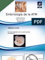 Embriología Atm