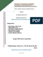 Práctica No. 4.- Observación de La Cromatina Sexual. Natalio.