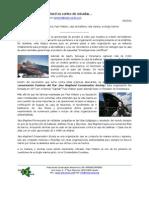 Focus on Sea Shepherd… (Spanish)