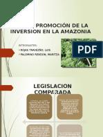 Ley de Promoción de La Inversion en la amazonia