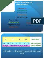 Ciclos Biogeoquimcos.pdf