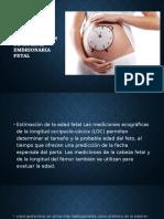 Determinación de La Edad Embrionaria Fetal