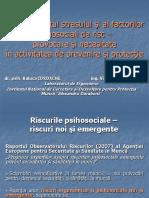 2014_Presentation_-_Raluca_Iordache_Viorica_Petreanu,_INCDPM.pdf