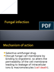 Fungal Infection 22