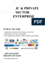 Public n Private Sector