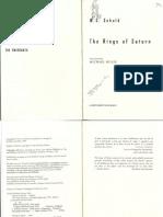The Rings of Saturn PDF-3