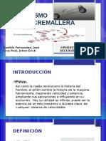 Exposicion Piñon Cremallera