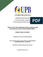 119715987 Produccion de Lechuga Lactuca Sativa Hidroponica