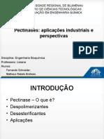 Apresentação Pectinases - Bioquímica (1)