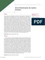 Processos de Descontaminação de Rações Contendo Micotoxinas