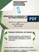 Normas Presentacion y Evaluacion TEG (2)
