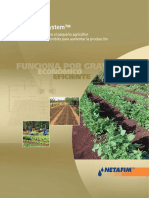 FDS Promo-Brochure Español