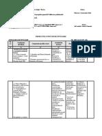 P.U.I. CDL-Instrumente de plata. cls.10.docx