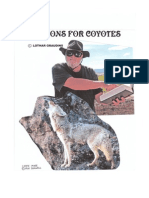 Sermons for Coyotes