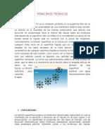 Tension Superficial(Principios Teoricos,Discusion,Concl., Recomen)