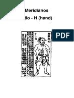94524929 Meridianos Ryodoraku Japones (1)