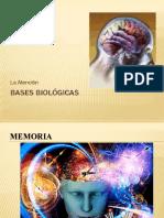 Memoria - Postitulo