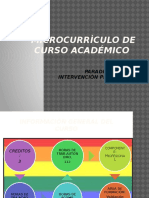 Otilia Pulecio_microcurriculo Paradigmas de La Intervenciòn Profesional