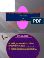 LECTURE Plant Transformation Agrobacterium-mediated Transformation