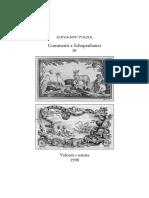Giovanni Piana Commenti a Schopenhauer 3