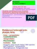 (8) . PAKU_Lycopodium..ppt