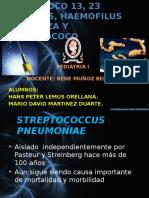 neumococo1323valenteshaemofilusinfluenza-110831223200-phpapp02