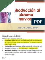 Sistema Nervioso Central - José Añorga
