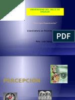 CAP 7_Percepción.pptx_ (1)