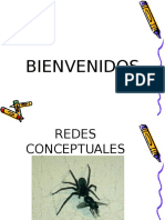 36172615 Redes Conceptuales