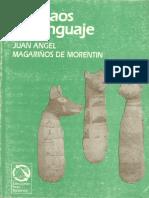 Del caos al lenguaje.pdf