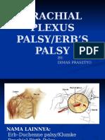 Erb Palsy Pediatri