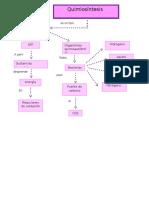 mapa quimiosintesis