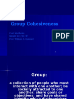 Group Cohesiveness.pptx