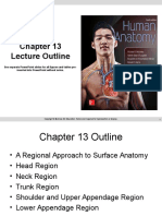 Anatomy  Ppt Chapter 13