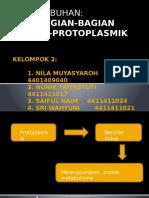 KELOMPOK 2_ANTUM
