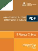 RIESGOS CRITICOS APLICADOS EN DRT.pdf