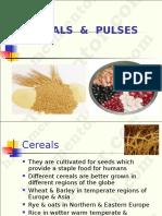 Cereals.ppt
