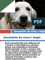 Malocluziile de Clasa 1 Angle