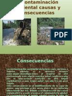 Lacontaminacinambientalcausasyconsecuencias 150121084055 Conversion Gate02