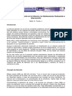 Disfuncion de La Atencion en La Infancia y La Adolescencia Evaluacion e Intervencion