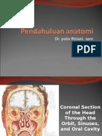 Pendahuluan anatomi